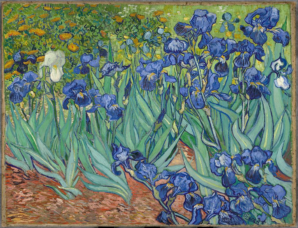 Van Gogh - 1889 Lirios